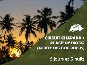 TATU roteiros FR DIOGO 300x225 - Circuit Chapada Diamantina + plage de Diogo (route des cocotiers)