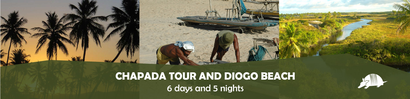 TATU roteiros ENG diogo banner - Chapada tour and Diogo beach - 6 days / 5 nights