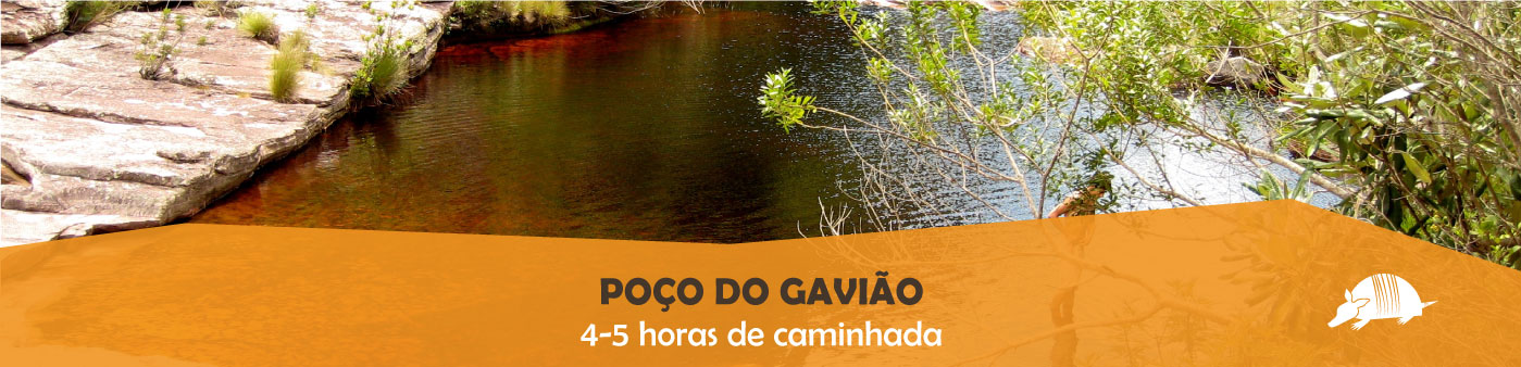 TATU roteiros gaviao banner 01out18 - Poço do Gavião